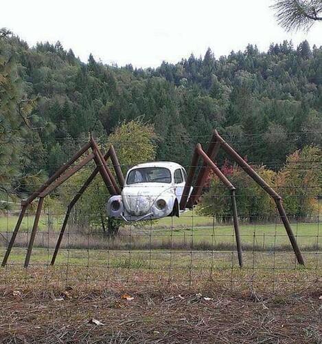 Spider%20car_7b0033_7012640